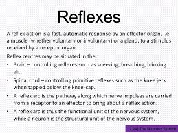 How Does A Reflex Arc Work In A Nervous System The Nervous System