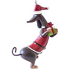 perfectly festive santa claus dachshund with present
