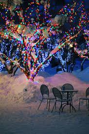christmas lights tree wrap how to wrap lights around trees hometalk