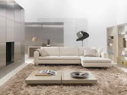 Large Modern Rug Wonderful Modern Rugs For Interior Home All Furniture