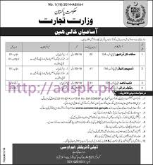 new career jobs ministry of trade islamabad govt of pakistan