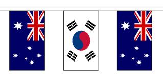 Korea Flag Image South Korea U0026 Australia 10m Friendship Flag Bunting