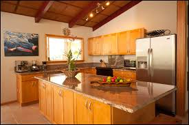 top honey maple kitchen cabinets like the shape and design of