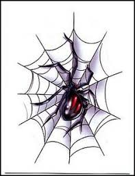 drawn spider web black and white pencil and in color drawn