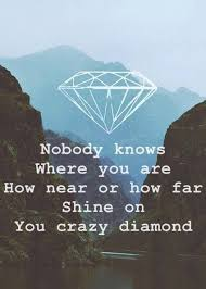 Lyrics For Comfortably Numb Best 25 Pink Floyd Quotes Ideas On Pinterest Comfortably Numb