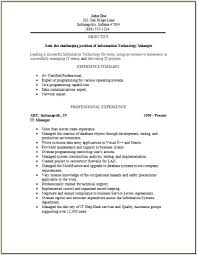 resume information technology manager information technology resume occupational exles sles free
