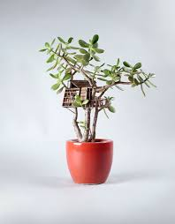 home design miniature tree houses for houseplants are just