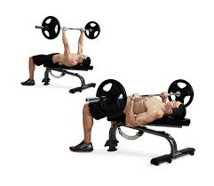 free weight bench press exercises bench decoration