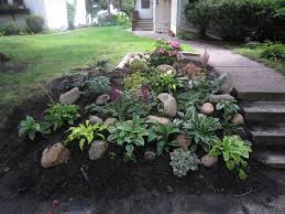 Backyard Plants Ideas Backyard Slope Ideas See The Plants I Used Here Landscaping
