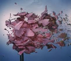 geoffroy mottart flower graveravens