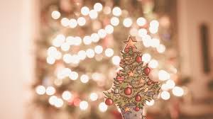 free images branch flower petal holiday pink lighting