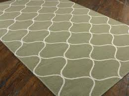 Indoor Outdoor Rugs Lowes New Outdoor Rugs Lowes Startupinpa