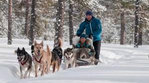 tromso aurora break huskies and snowmobiles 4 days 3 nights