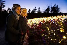 luminaria experience the light at thanksgiving point lovebugs