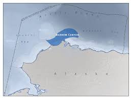 Barrow Alaska Map by Barrow Canyon Ecosystem At The Top Of The World U2013 Vital Arctic