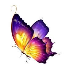 flower butterfly design yellow butterfly