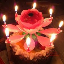 birthday candle flower 2pcs new rotating flowers musical lotus candle happy birthday