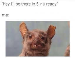 Bat Meme - meme monday so i had a baby