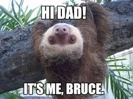 Angry Sloth Meme - meme creator sloth meme generator at memecreator org