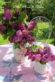 249 best lilacs images on pinterest flowers lilacs and