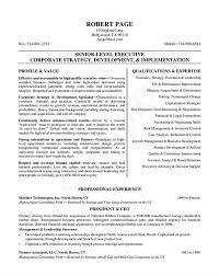 resume exle template 24 award winning ceo resume templates wisestep