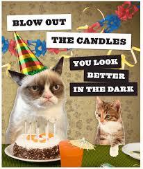 Grumpy Cat Birthday Memes - best of 25 birthday meme cat wallpaper site wallpaper site