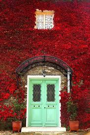 Main Door Flower Designs by 85 Best Door And Window Design Images On Pinterest Windows