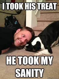 Dog Owner Meme - i took his treat he took my sanity crazy dog owner quickmeme