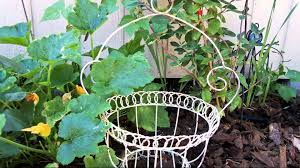 cool shabby chic garden ideas youtube