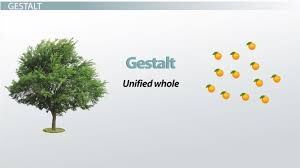 gestalt psychology definition u0026 principles video u0026 lesson