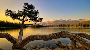 on the lake 1920x1080
