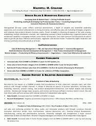 marketing executive resume executive resume sles pdf sle resume senior sales marketing
