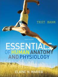 Human Anatomy Physiology 7th Edition Marieb Essentials Of Human Anatomy U0026 Physiology 10th Test Bank