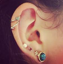 ear hoops 16 best piercings images on jewelry piercings