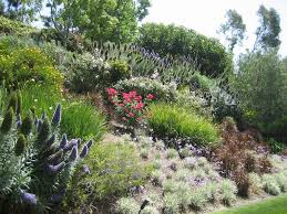 Landscape Ideas For Hillside Backyard by Landscaping Ideas For Banks And Slopes Backyard Hillside