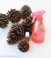 the easy way to make scented pine cones hometalk