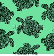 tortoise stock images royalty free images vectors