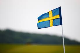 who is nils bildt fox news u0027 swedish