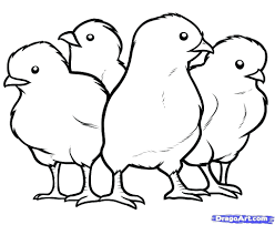 coloring page of a chicken energy cute baby chick coloring pages chicken page 4674 10720
