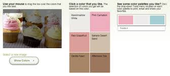 loads of fun with color palette inspiration