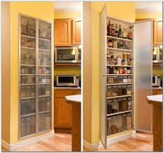 tall kitchen cabinet with doors pantry cabinet tall with doors best in kitchen plan stylist and