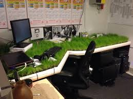 Office Desk Prank Grass Desktop Prank Worker Was Out Of The Office For 3 Weeks And