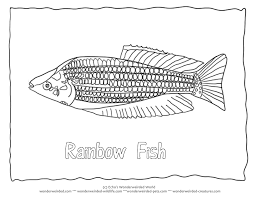 rainbow fish outline az coloring pages clip art library