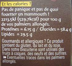 palmier du chili palmiers allongés aux gouttes de chocolat michel et augustin 35 g