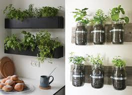 les herbes aromatiques en cuisine cuisine plantes aromatiques pour la cuisine plantes aromatiques