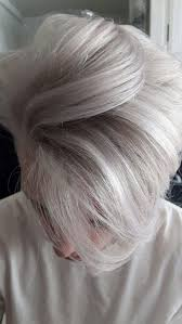 the 25 best silver hair men ideas on pinterest grey hair men
