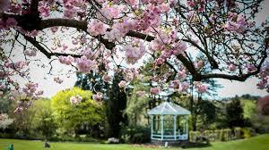 Botanical Garden Birmingham Birmingham Botanical Gardens Day Out With The