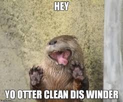 I Made Dis Meme - why i otter cleaning service imgflip