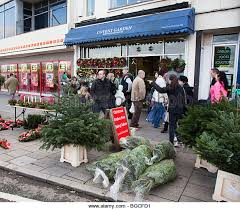 selling trees stock photos selling trees