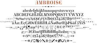ambroise typeface in details typofonderie